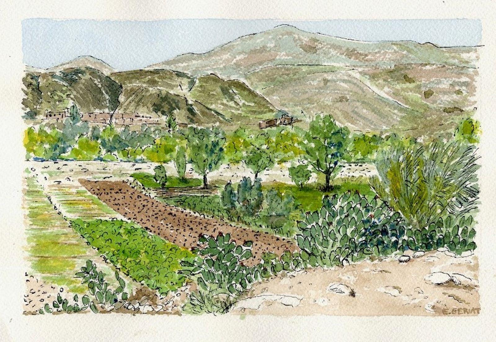 Copie de jardins Mohamed (Copier)